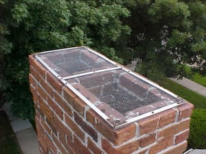 About chimney protective screens