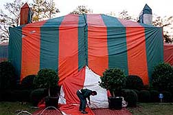 Preparing for termite tenting