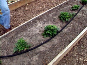 Irrigation systems for small gardens