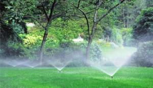 Garden watering system design