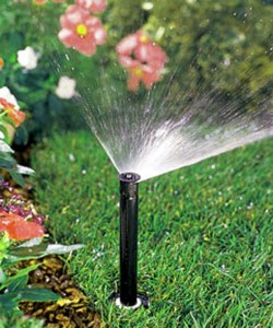 Garden irrigation design tips