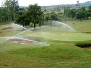 Timed irrigation systems