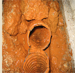 Preventing iron bacteria in drainage systems