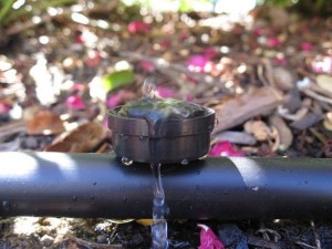 Garden drip irrigation system tips