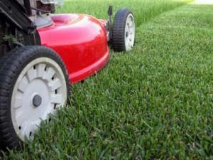 Lawn vanning