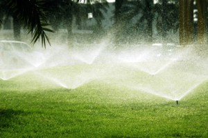 Timed irrigation system advantages
