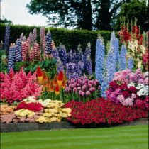 Design for Perennial blomsterbed