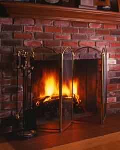 Reduce chimney repair costs