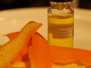 Buying orange oil for termites
