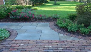 Patio paving - Blue stone