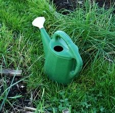 Automatic homemade watering system