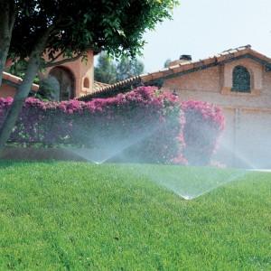Automatisk tre vanningssystem