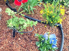 Jardín del sistema de riego por goteo