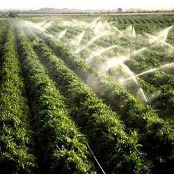 Irrigation systems for crops