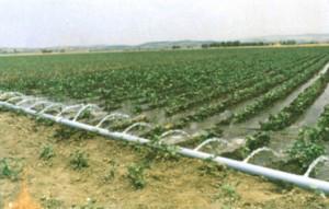 Agricultural vanningsanlegg