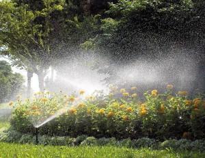 Jardín sistema de riego