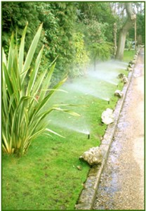 Garden irrigation tips