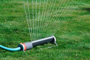 Garden irrigation - Tips