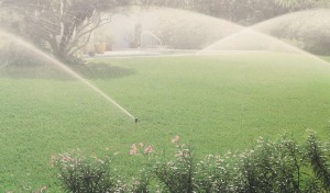 Irrigation sprinklers - Information