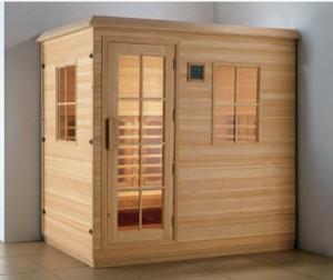 Pareti sauna esterna e le porte