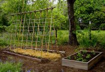How to make a vegetable garden trellis
