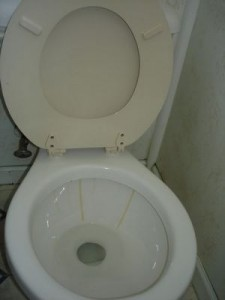 Get rid of hard water spots in your toilet
